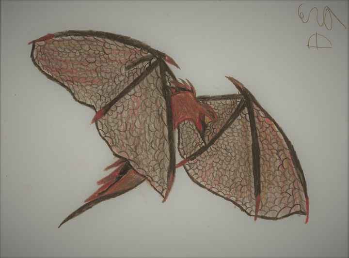 Flying Dragon - Cera's Art