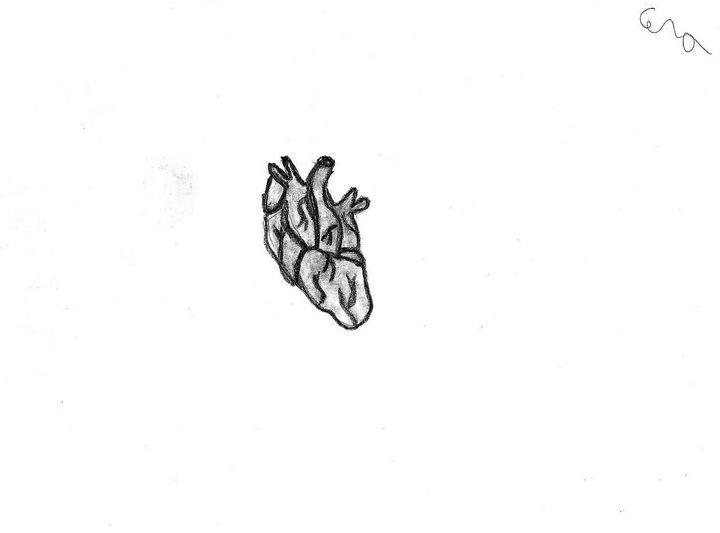 Human Heart - Cera's Art