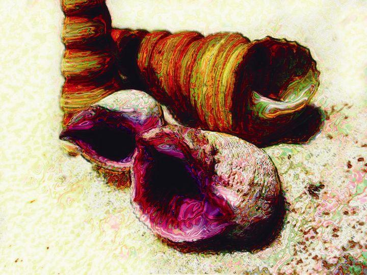 Caracoles púrpura - Javierd8a
