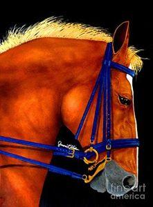 Blue Bridle