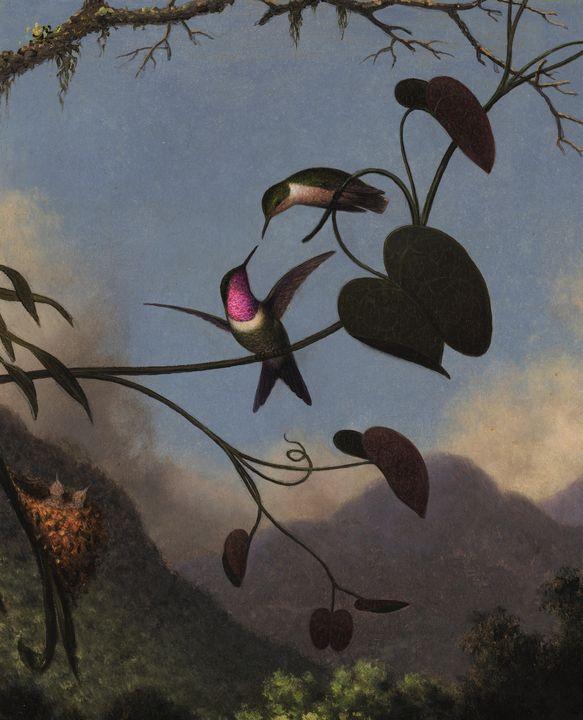 Martin Johnson Heade~Amethyst Woodst - Artmaster