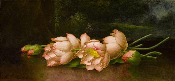 Martin Johnson Heade~Lotus Flowers A - Artmaster