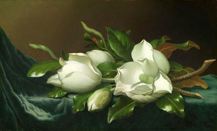 Martin Johnson Heade~Magnolias on Li - Artmaster