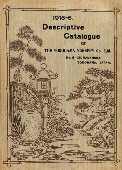 The Yokohama Nursery Co. Ltd.~Front - Artmaster
