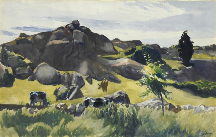 Edward Hopper~Cape Ann Pasture - Artmaster