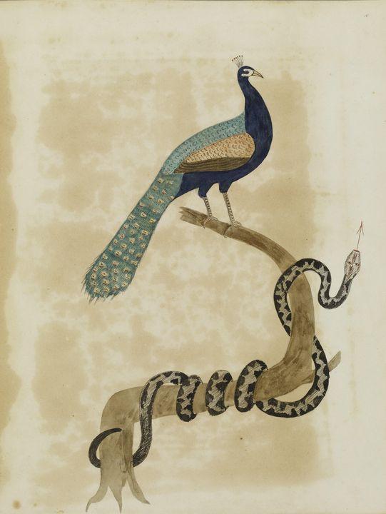 Justus DaLee~Emblematical Figures, R - Artmaster