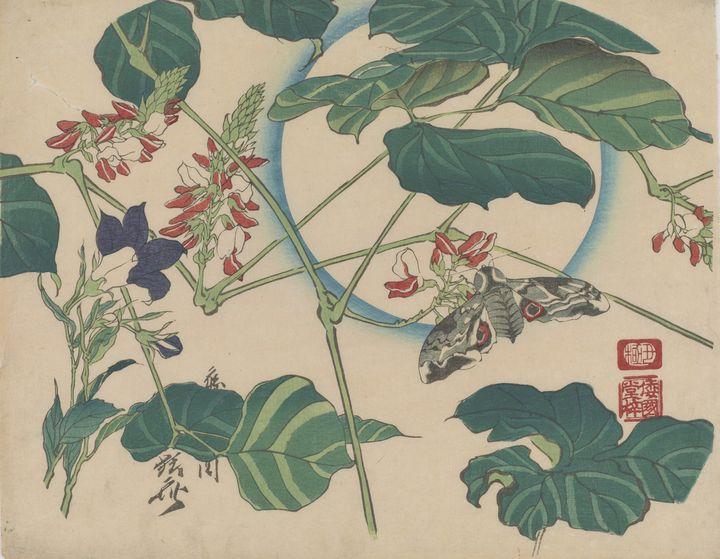 Kawanabe Kyōsai~Moon, Bean and Moth - Artmaster