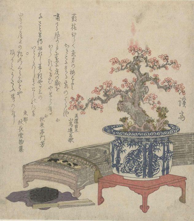 Keisai Eisen~Koto met pruimenbloesem - Artmaster