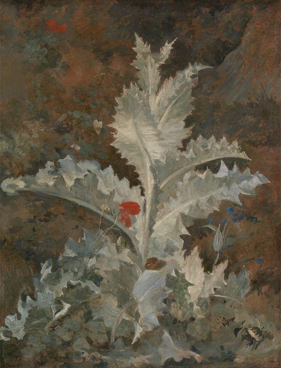 John Crome~A Thistle - Artmaster