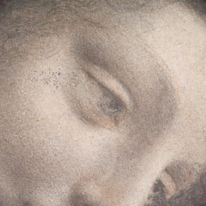 Leonardo da Vinci~The Head of the Vi