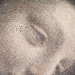 Leonardo da Vinci~The Head of the Vi