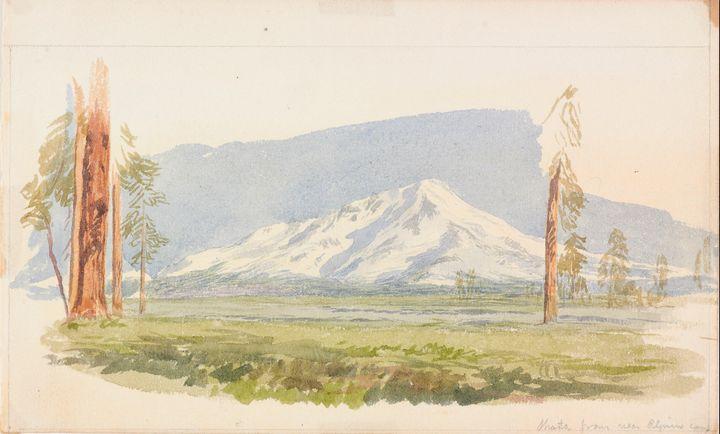 John Henry Hill~Shasta - Artmaster