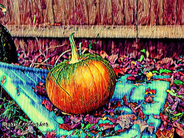 The Lonely Pumpkin - MaryLeeParkerArt