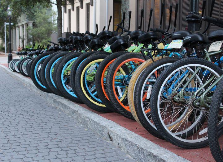Bike Rack - Daniel Moore