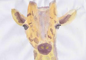 Dreaming Giraffe