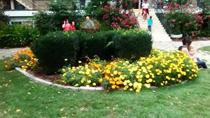 cresent hotel garden