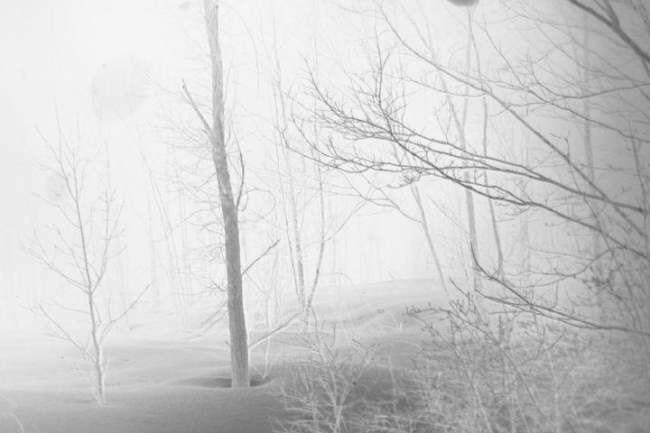 Beyond the Mist - Lighthouse Rock