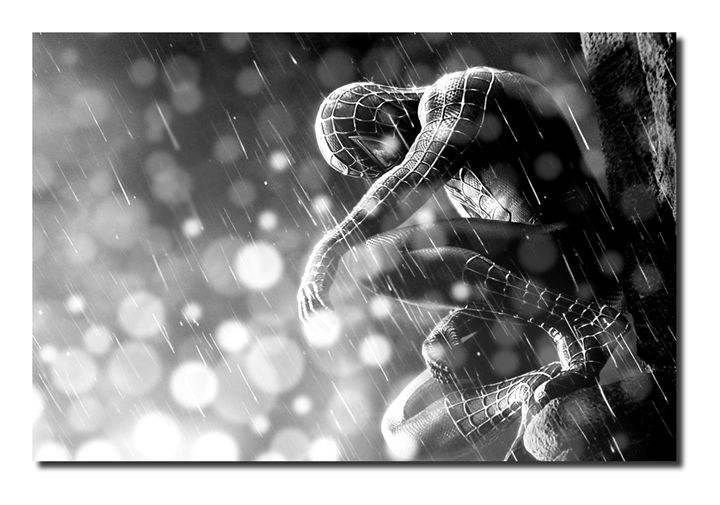 Spider-Man Canvas Art, size A1 NEW! - David Gilkes
