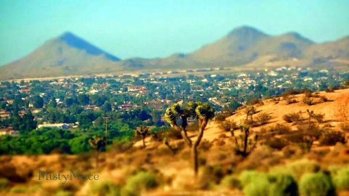 High Desert - Misty Place