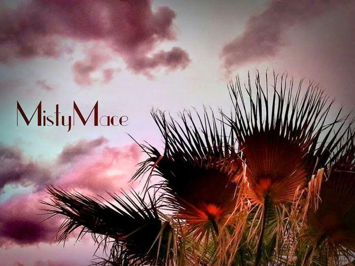 palms - Misty Place
