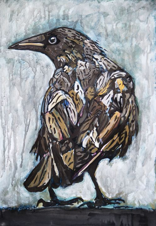 Raven / 50 x 35 cm (2019) - Alexandra Djokic