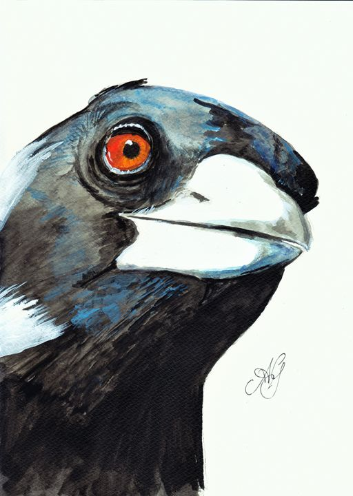 Magpie - Annies art