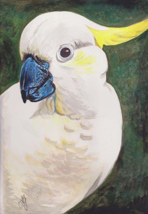 Sulphur crested Cockatoo - Annies art