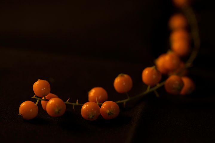 Berries! - suekeastphotos