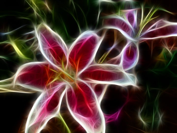 Looming Lilies - Tamera Seevers Studio