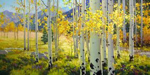 Afternoon Aspen Trail - GK FINE ART GALLERY