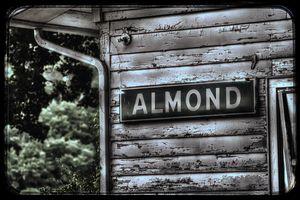 Almond NC Depot