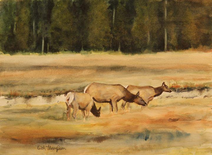 Yellowstone Elk - keiththompsonart
