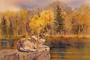 Northwoods Wolf