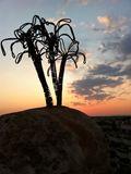 Empty Island sculpture
