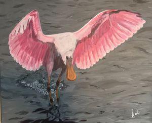 Roseate Spoonbill - Art Of Lonnie
