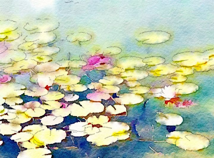Water Lilies - Lightworker Art