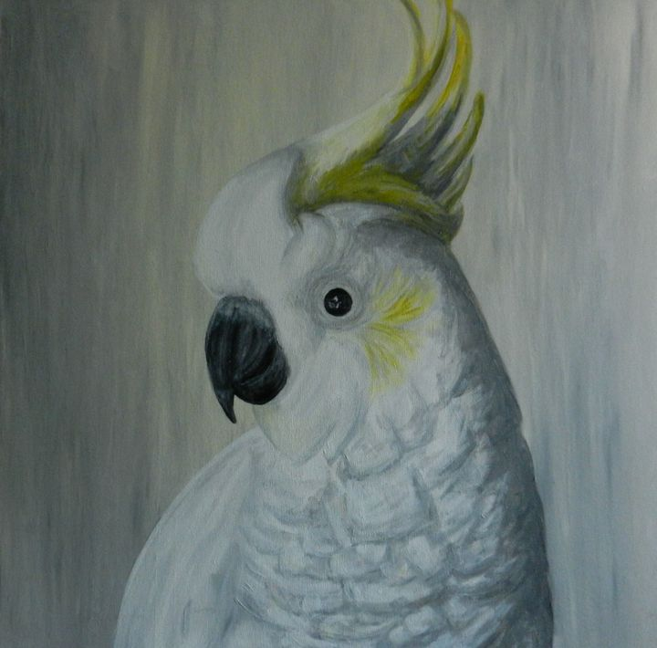 White Cockatoo - Borsulke