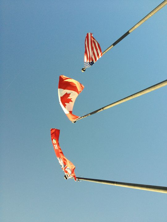 flags in the sun - carrigs artwork