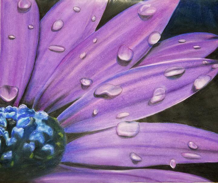 Purple Majesty - Kagandahan