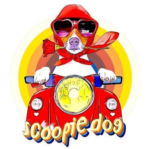 Scoopie Dog