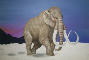 Mammoth that I have never seen