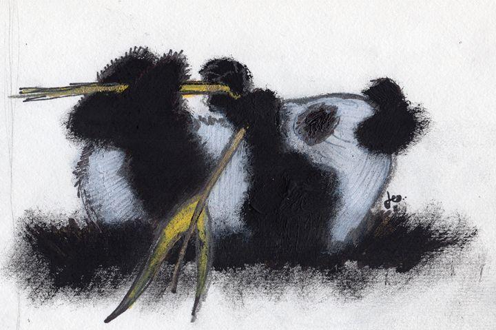 Panda - Dylon Zicchino