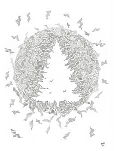 Duality of Nature II