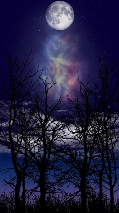 Sky light - Nature lover