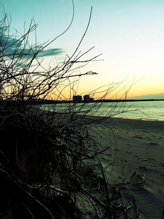 20160324-42 Beach - Diane Ong