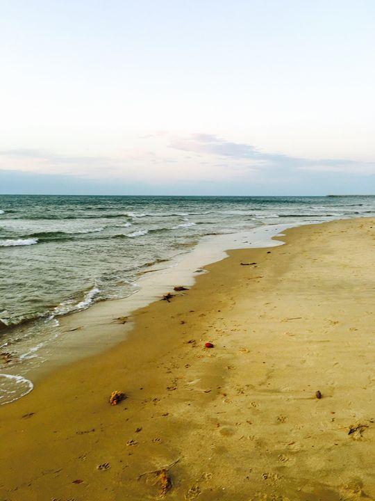 20160324-44 Beach - Diane Ong
