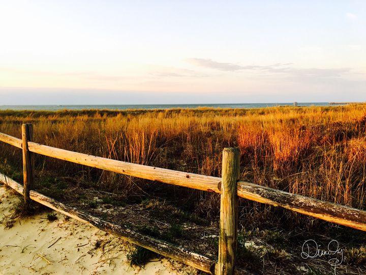20160324-50 Beach - Diane Ong