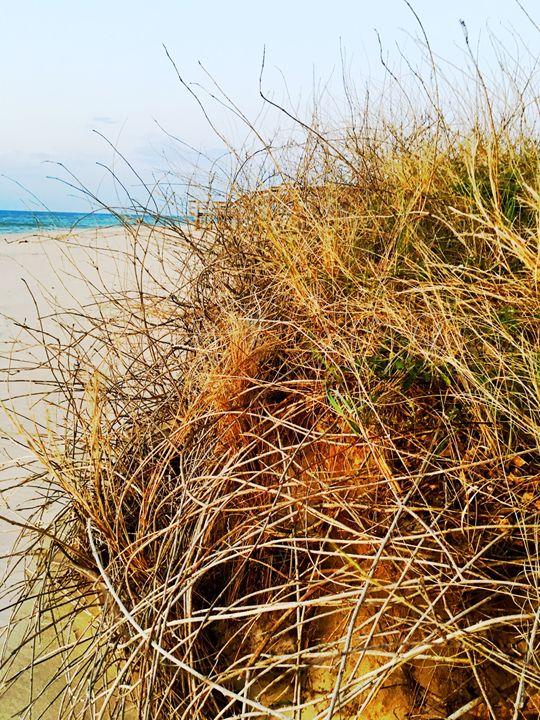 20160324-51 Beach - Diane Ong