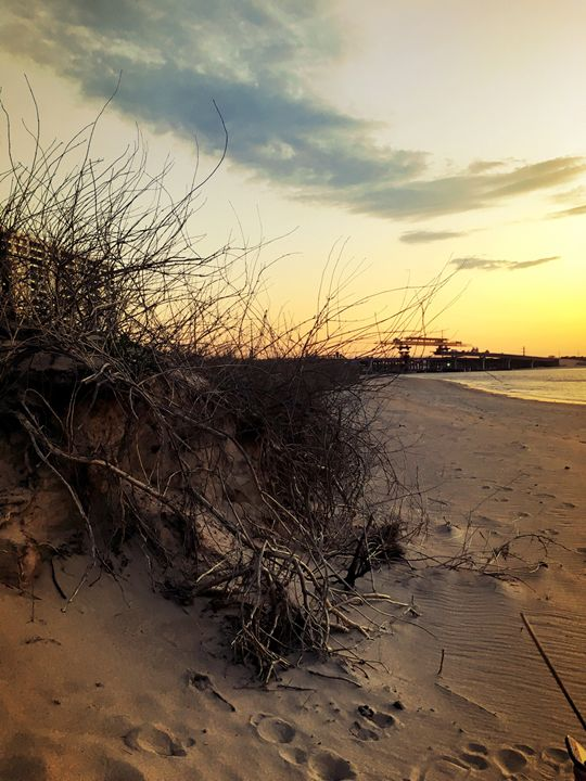 20160324-53 Beach - Diane Ong