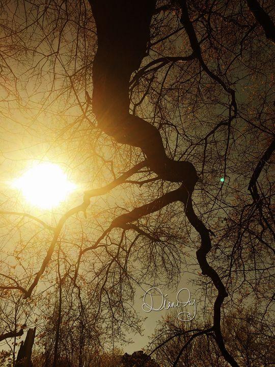 20160324-17 Trees - Diane Ong